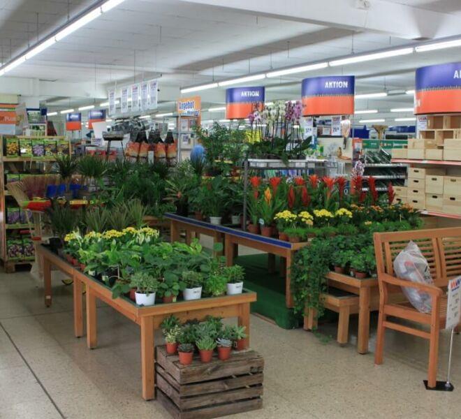batzner-standort-ebelsbach-pflanzen